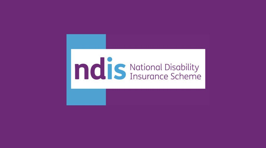 NDIS workshops